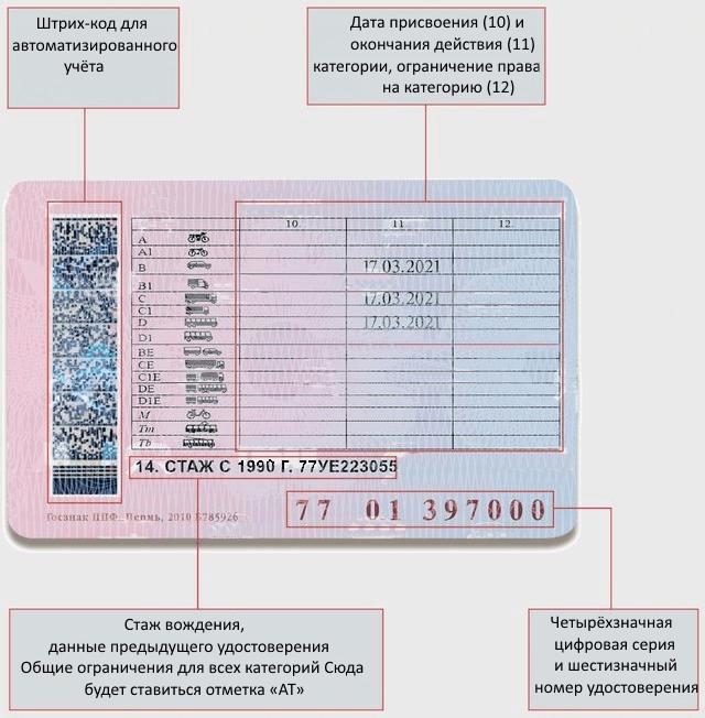 Как выглядит национальное водительское удостоверение 2020